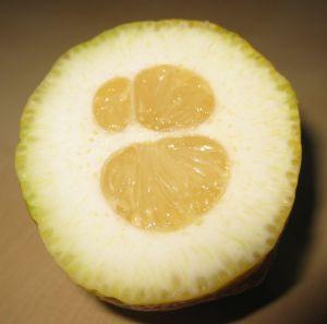 Blije citroen!