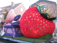 Bloemencorso 2013 - Strawberry!